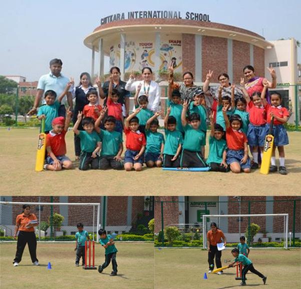 cricket-tounament